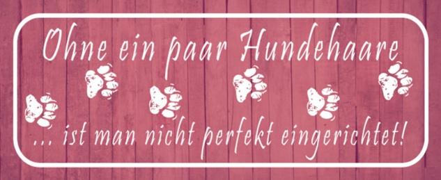 Blechschild Spruch Hund Ohne ein Paar Hundehaare? Metallschild 27x10 cm Wanddeko tin sign