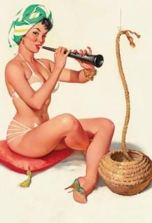 Nostalgie Pin up sexy Frau als (Seil)Schlangen Beschwörer Blechschild 20x30cm