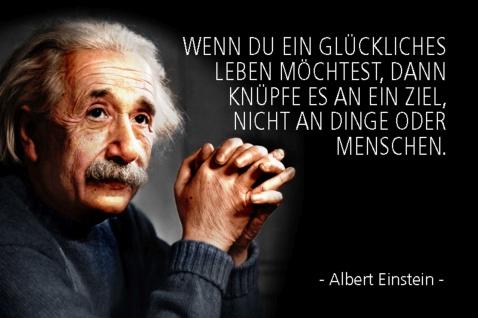 Blechschild Spruch Einstein Wenn du ein glückliches Leben Metallschild Wanddeko 20x30 cm tin sign