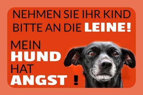 Blechschild Spruch Hund hat Angst Metallschild Wanddeko 20x30 cm tin sign