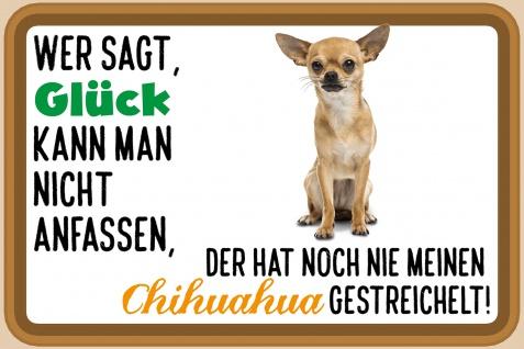 Blechschild Spruch Glück, Chihuahua Metallschild Wanddeko 20x30 cm tin sign