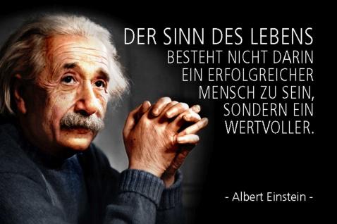 Blechschild Spruch Einstein Der Sinn des Lebens Metallschild Wanddeko 20x30 cm tin sign
