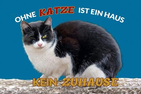 """"""" Ohne Katze ist ein haus kein zuhause"""" blechschild, lustig, comic, metallschild"""