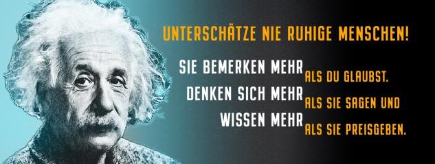 Blechschild Einstein: Unterschätze nie ruhige Menschen Metallschild Wanddeko 27x10 cm tin sign