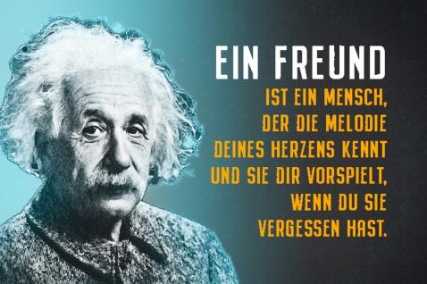 Blechschild Spruch Einstein Ein Freund ist ein Mensch Metallschild Wanddeko 20x30 cm tin sign