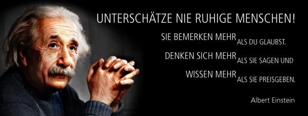 Blechschild Spruch Unterschätze nie ruhige Menschen! -Einstein- Metallschild 27x10 cm Wanddeko tin sign