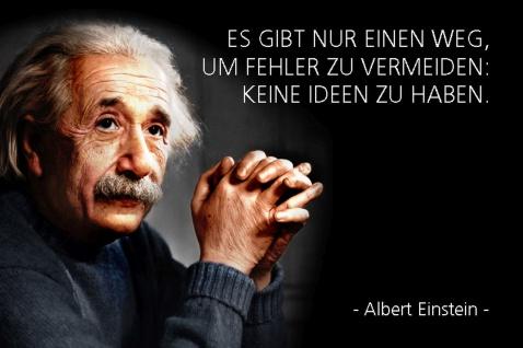 Blechschild Spruch Einstein Fehler zu vermeiden Metallschild Wanddeko 20x30 cm tin sign
