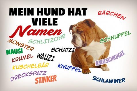 Blechschild Spruch Mein Hund hat viele Namen Metallschild Wanddeko 20x30 cm tin sign
