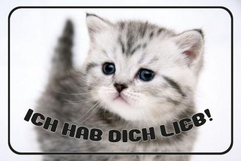 """"""" Ich hab dich lieb!"""" - kitten, kätzchen, katze, niedlich, tier, blechschild, metallschild, dekoschild"""