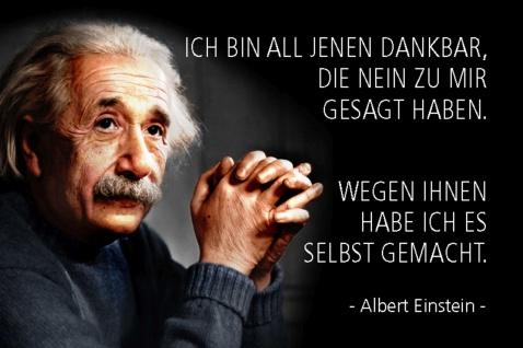 Blechschild Spruch Einstein Ich bin all Jenen dankbar Metallschild Wanddeko 20x30 cm tin sign