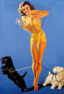 Nostalgie Pin up sexy Frau mit zwei Hunden Blechschild 20x30 cm