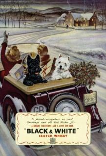 Black & White Scotch whisky westie scottie terrier hund weihnachten christmas blechschild