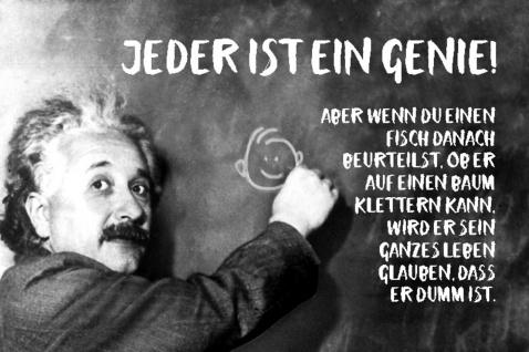 Blechschild Spruch Jeder ist ein Genie Einstein Metallschild Wanddeko 20x30 cm tin sign