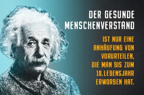 Blechschild Spruch Der gesunde Menschenverstand Einstein Metallschild Wanddeko 20x30 cm tin sign