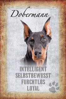 Hunde steckbrief: Dobermann - intelligent, selbstbewusst, furchtlos, loyal blechschild