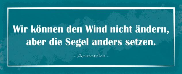 Blechschild Spruch Wir können den Wind nicht ändern Metallschild Wanddeko 27x10 cm tin sign