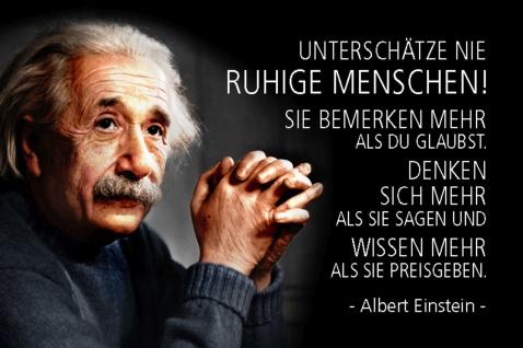Blechschild Spruch Einstein Unterschätze nie ruhige Menschen Metallschild Wanddeko 20x30 cm tin sign
