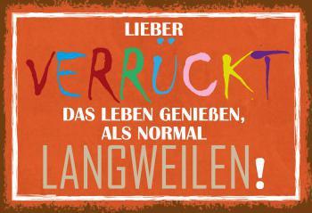 Blechschild Spruch Lieber verrückt als Langweilig... Metallschild 20x30 Deko
