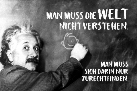 Blechschild Spruch Man muss die Welt nicht Einstein Metallschild Wanddeko 20x30 cm tin sign