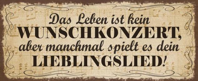 Blechschild Spruch Das Leben ist kein Wunschkonzert Metallschild Wanddeko 27x10 cm tin sign
