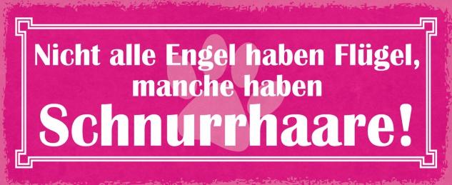 Blechschild Spruch Nicht alle Engel haben Flügel Metallschild Wanddeko 27x10 cm tin sign