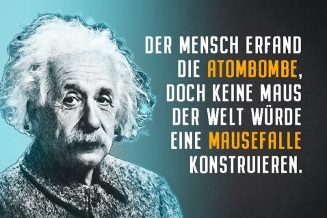 Blechschild Spruch Einstein Mensch erfand Atombombe Metallschild Wanddeko 20x30 cm tin sign
