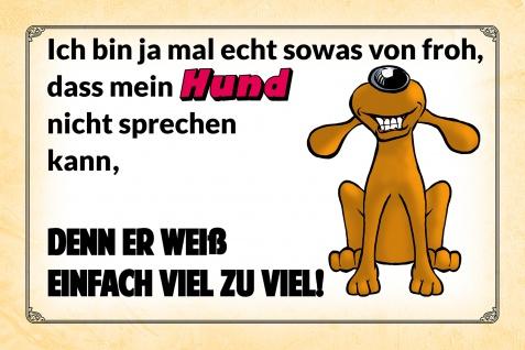 Blechschild Spruch Mein Hund weiß zuviel Metallschild Wanddeko 20x30 cm tin sign
