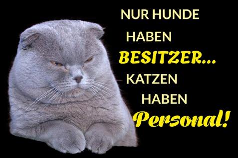 Blechschild Nur Hunde haben Besitzer, Katzen haben Personal Metallschild Wanddeko 20x30 tin sign