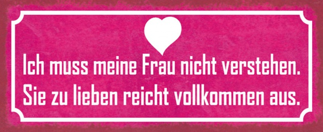 Blechschild Spruch Frau nicht verstehen lieben Metallschild 27x10 cm Wanddeko tin sign