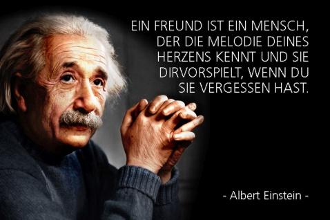 Blechschild Spruch Einstein Freund Mensch Herz Metallschild Wanddeko 20x30 cm tin sign