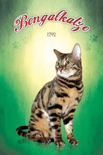 Schatzmix Blechschild Bengal Katze 1792 Metallschild 20x30 cm Wanddeko tin sign