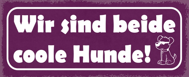 Blechschild Spruch Wir sind beide coole Hunde! Metallschild 27x10 Deko tin sign