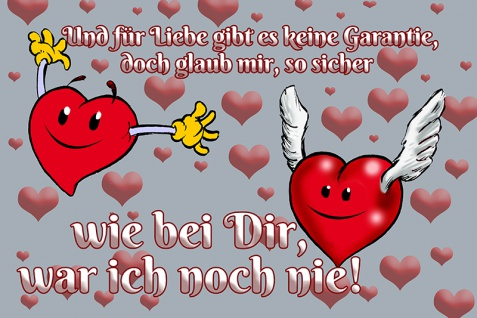 Blechschild Für Liebe gibt's keine Garantie Metallschild Wanddeko 20x30 tin sign
