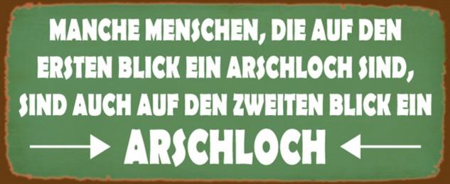Blechschild Spruch Manche Menschen sind auf ersten und zweite Blick ein Arschloch grünes Metallschild 27x10 cm Wanddeko tin sign