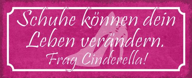 Blechschild Spruch Schuhe können dein Leben verändern. Frag Cinderella! Metallschild 27x10 Deko tin sign
