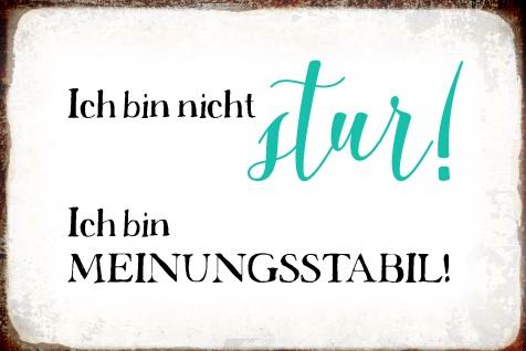 Blechschild Spruch Ich bin nicht stur! Metallschild Wanddeko 20x30 cm tin sign