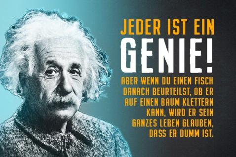 Blechschild Spruch Einstein Jeder ist ein Genie! Metallschild Wanddeko 20x30 cm tin sign