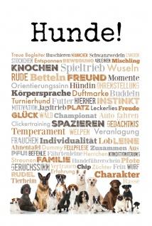 Blechschild Spruch Hunde weißes Metallschild 20x30cm Wanddeko tin sign