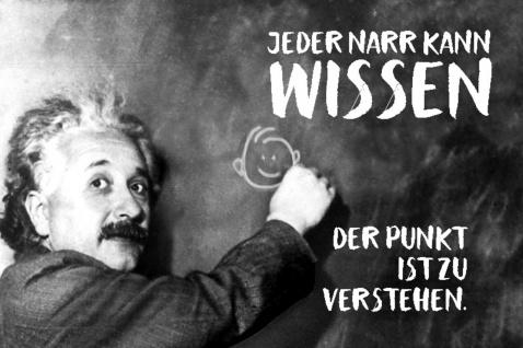 Blechschild Spruch Jeder Narr kann Wissen Einstein Metallschild Wanddeko 20x30 cm tin sign