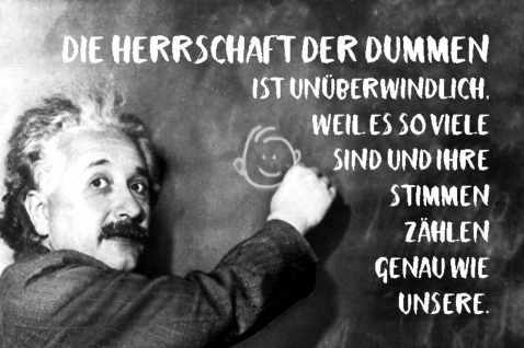 Blechschild Spruch Die Herrschaft der Dummen Einstein Metallschild Wanddeko 20x30 cm tin sign