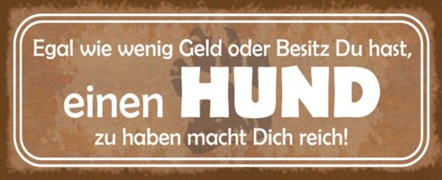 Blechschild Spruch Hund Geld Besitz reich Metallschild 27x10 cm Wanddeko tin sign