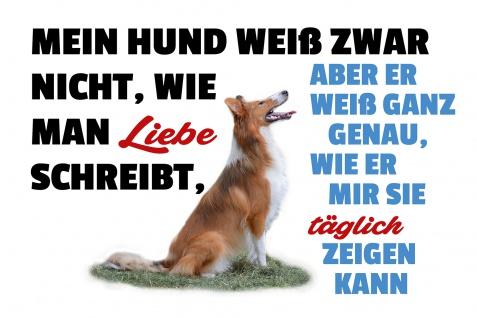Blechschild Spruch Hundeliebe Metallschild Wanddeko 20x30 cm tin sign