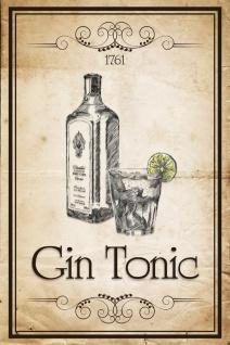 Schatzmix Blechschild Gin Tonic 1761 Metallschild 20x30 cm Wanddeko tin sign