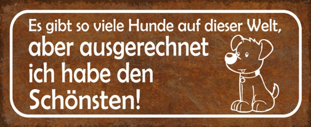 Blechschild Spruch Hund den schönsten Metallschild 27x10 cm Wanddeko tin sign