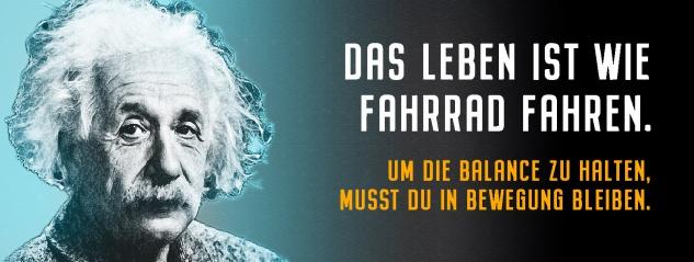 Blechschild Einstein: Das Leben ist wie Fahrrad fahren bleiben Metallschild Wanddeko 27x10 cm tin sign