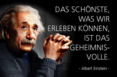 Blechschild Spruch Einstein Schönste was Geheimnisvoll Metallschild Wanddeko 20x30 cm tin sign