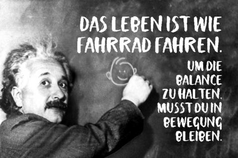 Blechschild Spruch Das Leben ist wie Fahrrad Einstein Metallschild Wanddeko 20x30 cm tin sign