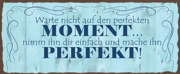 Blechschild Spruch Warte nicht auf den perfekten Moment Metallschild Wanddeko 27x10 cm tin sign