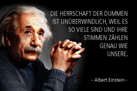 Blechschild Spruch Einstein Die Herrschaft der Dummen ist Metallschild Wanddeko 20x30 cm tin sign