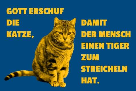 """"""" Gott erschuf die Katze?."""" blechschild, lustig, comic, metallschild"""
